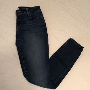 LOFT Curvey Skinny Medium Wash Jeans